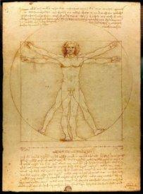 Da_Vinci_Vitruvian_man_from_wiki
